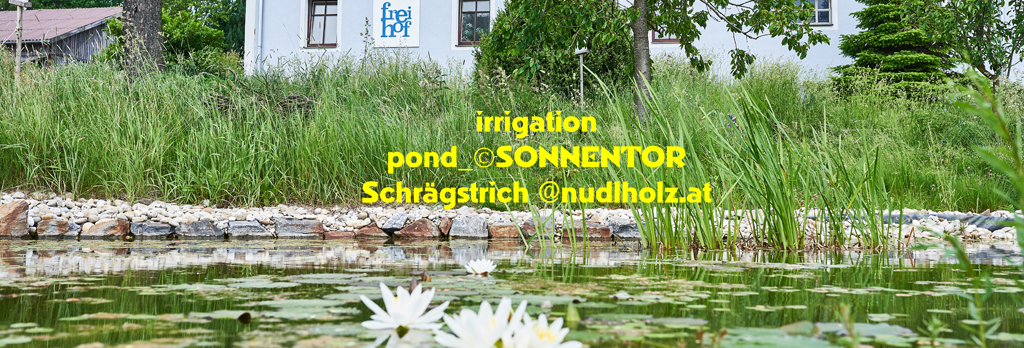 Irrigation pond